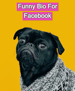 Funny bio for Facebook