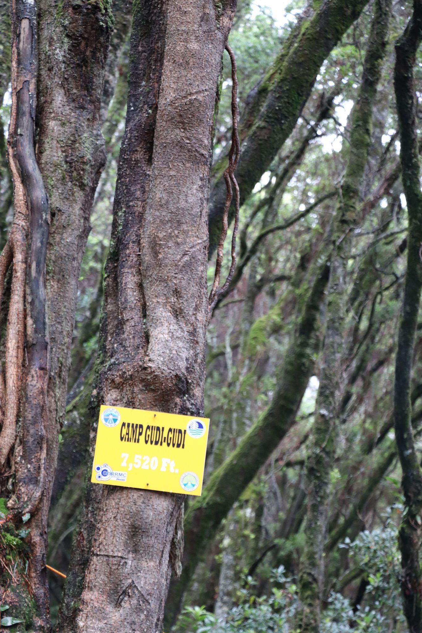 Mt. Apo - Camp Gudi-Gudi marker