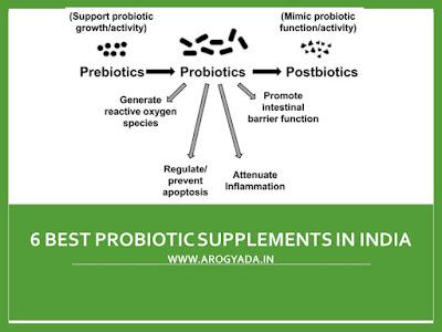 6 Best Probiotic Supplements in India