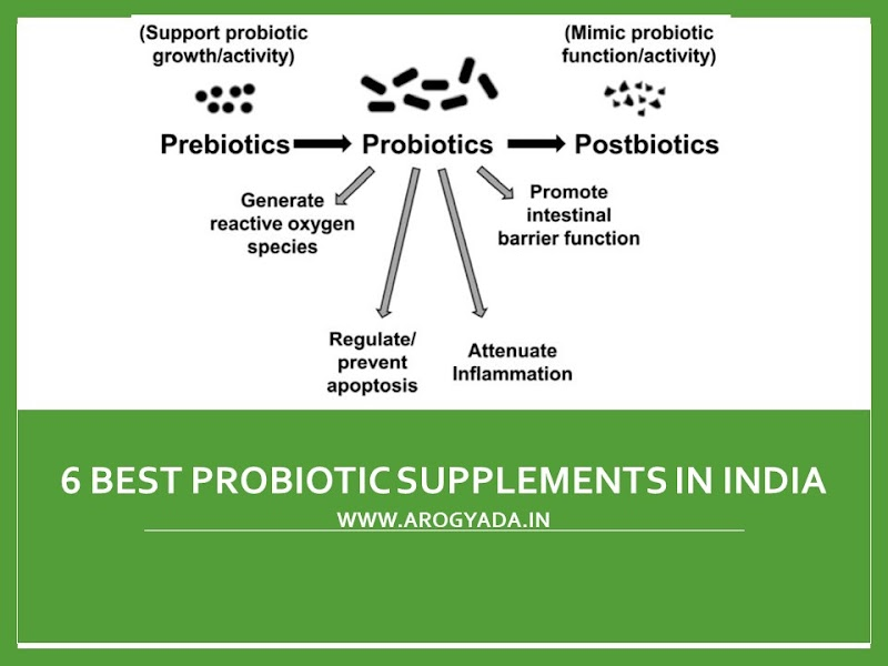 6 Best Probiotic Supplements in India