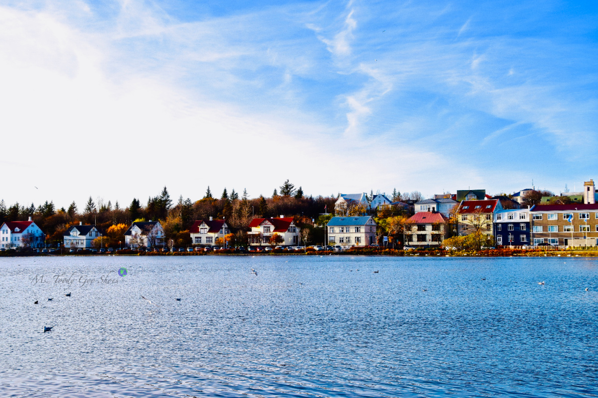 Waterfront Homes on Lake Tjornin, Iceland  Ms. Toody Goo Shoes