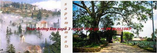 Tour du lịch làng cổ Đường Lâm Vạn Phúc Sapa 3 ngày 3 đêm hàng ngày