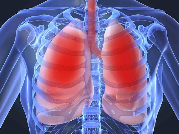 4 TYPES OF THESE FOODS ARE ABLE TO CLEAN LUNGS ONLY IN TIME 72 HOURS