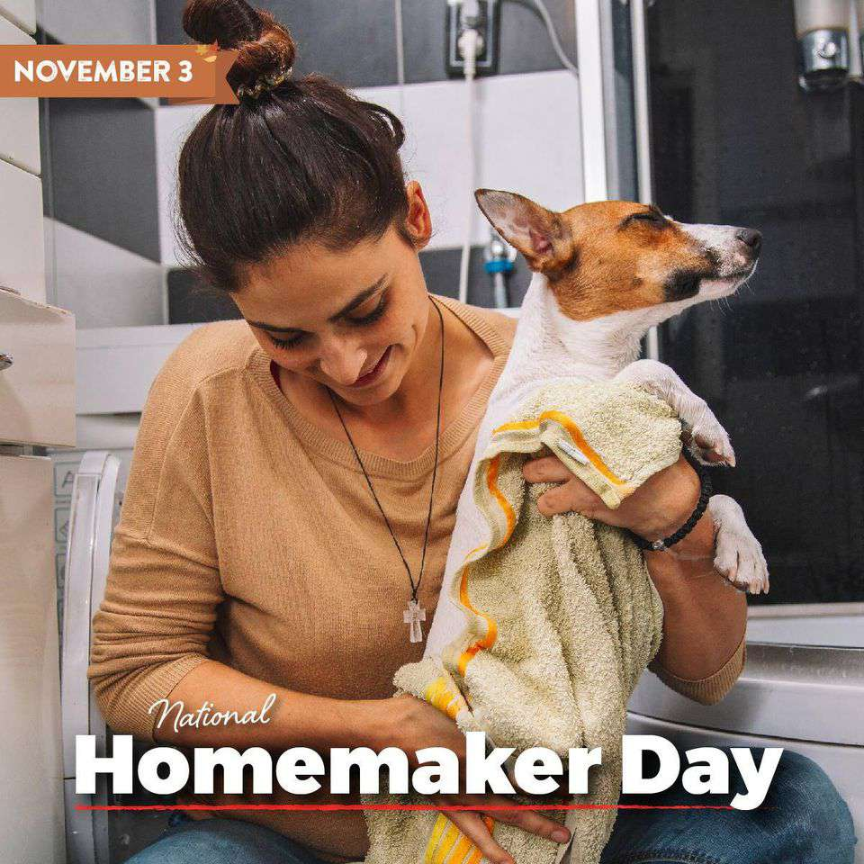 National Homemaker Day Wishes