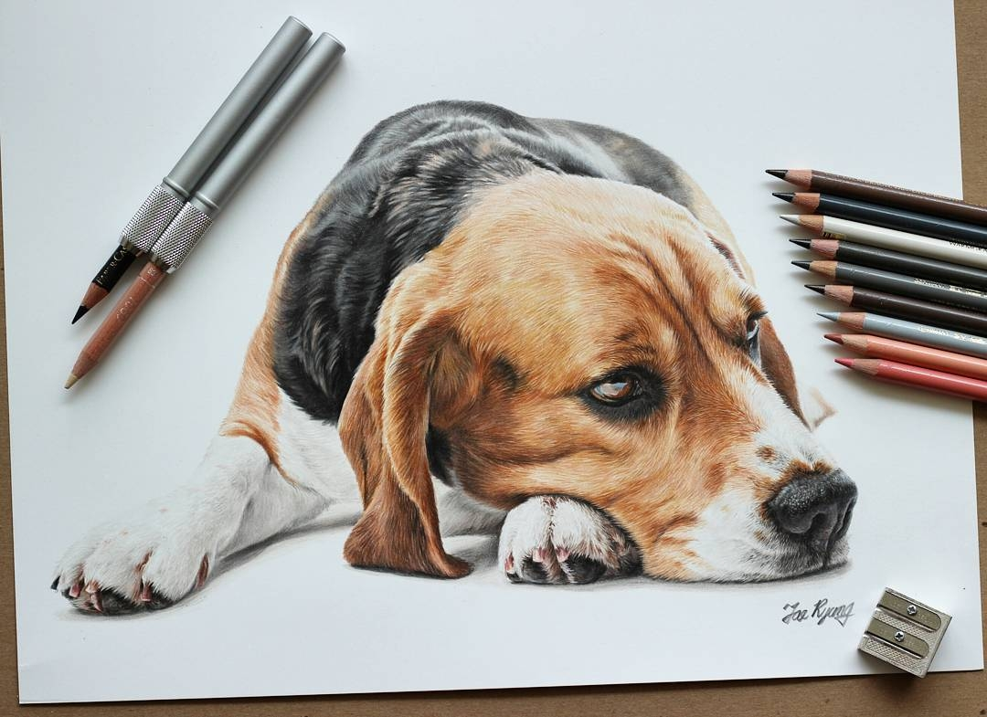 06-Beagle-Jae-Kyung-Cute-Kittens-and-Puppies-Drawings-www-designstack-co