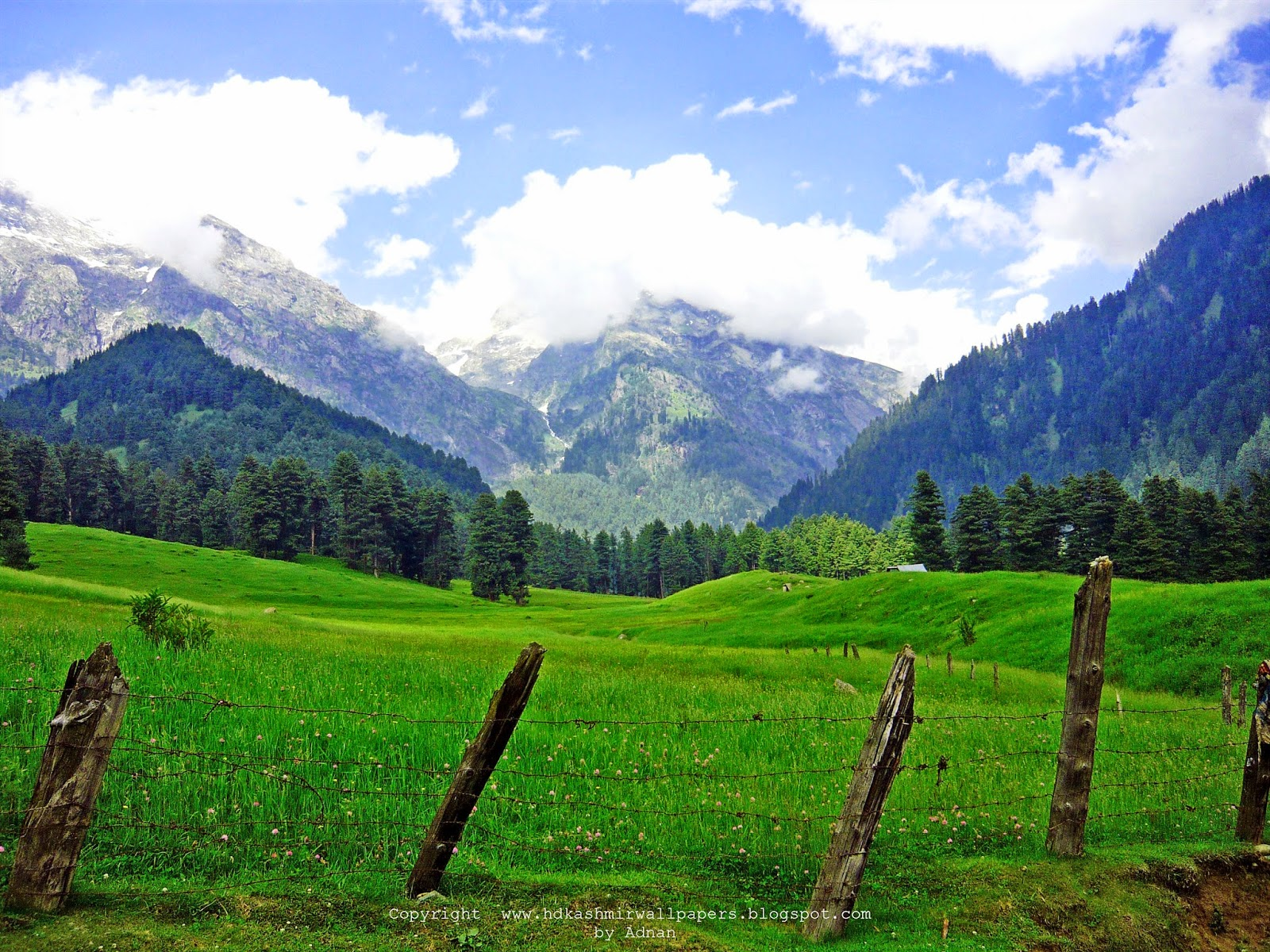 Aru Pahalgam Kashmir | HD Kashmir Wallpapers