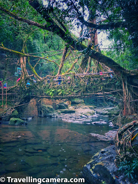 There is a small water stream flowing under this living root bridge in Mawlynnong of Meghalaya state of India. Many of the photographs you see in blogpost are clicked around the living root bridge of Mawlynnong and with mobile phone camera.