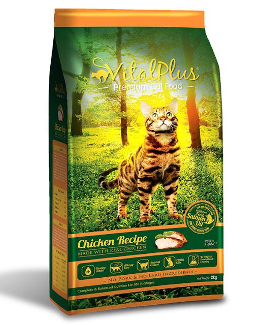 Makanan Kucing Terbaik Jadi Pilihan Si Bulusku
