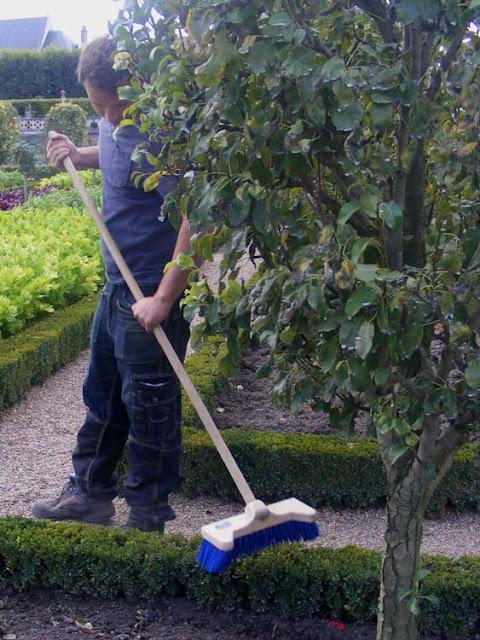 Apprentice gardener, Villandry, Indre et Loire, France. Photo by Loire Valley Time Travel.