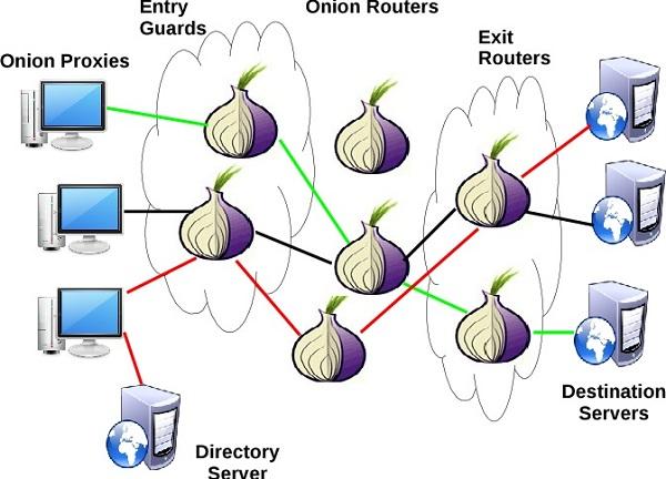 كل ماتحتاج معرفته عن شبكة تور والفرق بينها وبين الفي بي ان VPN