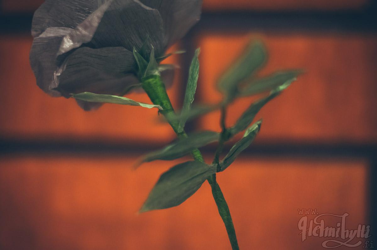 ruusu-kreppipaperi