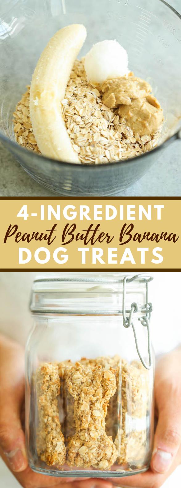 PEANUT BUTTER BANANA DOG TREATS #healthy #snacks