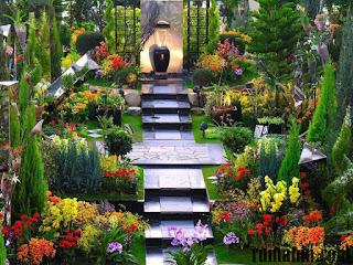 Contoh Taman Minimalis Belakang Rumah Paling Diminati