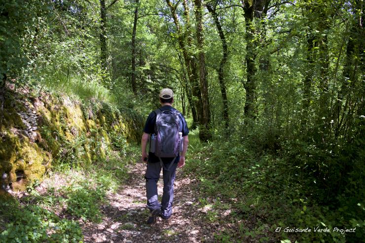 Sendero tras las huellas de los hombres de Lascaux - Montignac, Francia por El Guisante Verde Project
