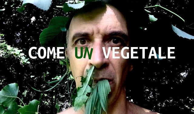 Come un vegetale spettacolo