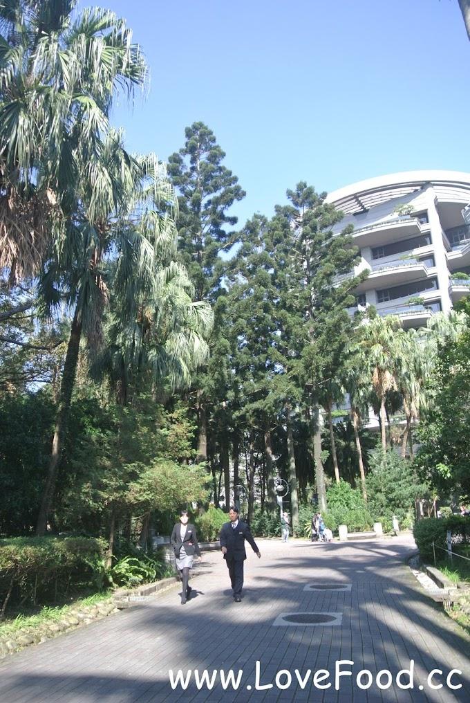 【台北中正】台北植物園-城市裡的大花園 漫步在荷花池與林蔭間-Taipei Botanical Garden