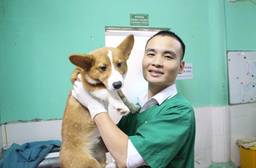 Ngành Thú y là gì? Làm sao để trở thành bác sĩ thú y?