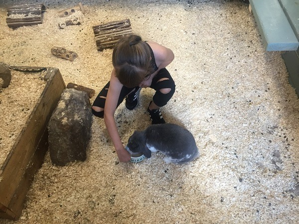 What's On for Kids - October Half Term | North East England - Mini Keepers at Whitehouse Farm
