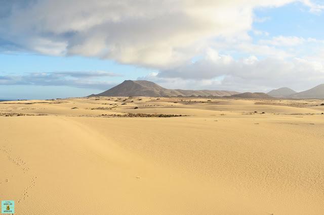 Parque Natural de las dunas de Corralejo, Fuerteventura