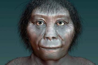 Jenis Manusia Purba yang Ditemukan di Indonesia