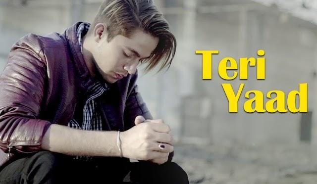 Teri yaad Lyrics - Kunal Soni | Shibangee Dhar, Priya Rai