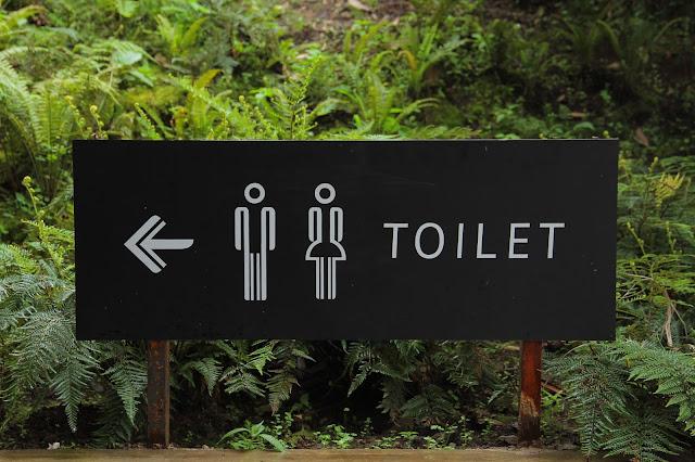 هكذا أصبحت المراحيض حق دستوري وليس حقا طبيعيا.