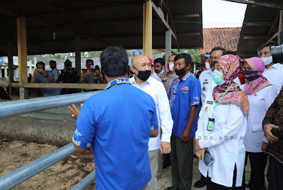 Kemenkop UKM dan Pemprov Lampung Bidik Peternak Bentuk Holding Usaha Koperasi