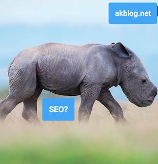 Akblog SEO Internet Bilişim Internet Hizmetleri