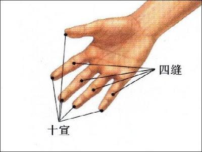 肘尖穴位 | 肘尖穴痛位置 - 穴道按摩經絡圖解 | Source:zhongyibaike.com