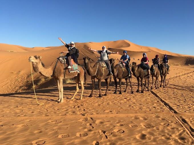 1 Night camel treking in Merzouga Desert