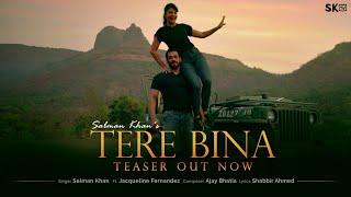 Tere Bina Lyrics in Hindi– Salman Khan