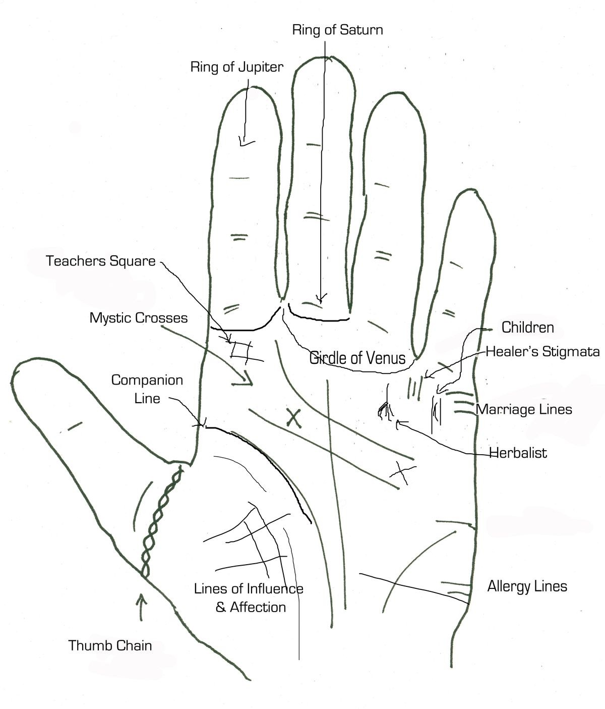 Palm Reading Wealth Line | Wiring Diagram Database