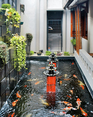 desain kolam minimalis,perancang kolam minimalis,jasa