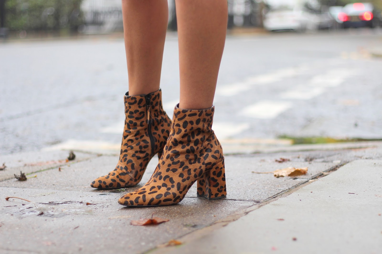 leopard print ankle boots topshop peexo blog