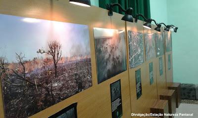 Estação Natureza pantanal, fogo, exposição, queimadas, incêndios florestais, incêndios, fogo, meio ambiente, pantanal, biodiversidade, natureza, seca
