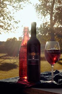 Een goede rode wijn in een toepasselijk glas