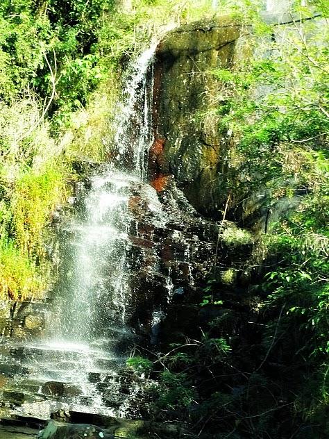 Cachoeira em meio à mata, na Costa da Lagoa, Florianópolis.