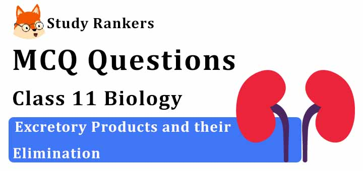 MCQ Questions for Class 11 Biology: Ch 19 Excretory Products and their Elimination