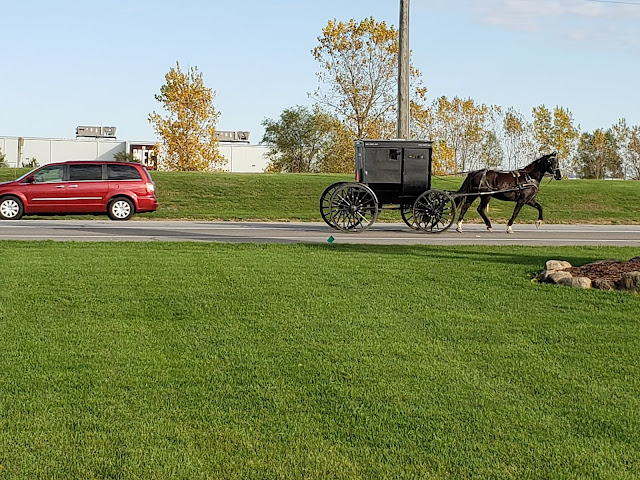 A Horse-drawn Buggy in Shipshewana, Indiana