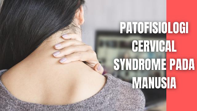 Patofisiologi Cervical Syndrome Pada Manusia Dalam penelitian Makmuriyah mengatakan bahwa nyeri otot pada tubuh bagian atas lebih sering terkena dibanding tubuh lain. Titik nyeri 84% terjadi pada otot upper trapezius, levator scapula, infra spinatus, scalenus. Otot upper trapezius merupakan otot yang sering terkena.   Salah satu kondisi yang sering menimbulkan rasa nyeri pada otot upper trapezius adalah myofascial syndrome. Myofascial syndrome adalah gangguan nyeri muskuloskeletal yang terjadi akibat adanya myofascial trigger point. Gangguan ini dapat menyebabkan nyeri lokal atau reffered pain, tightness, stiffness, spasme, keterbatasan gerak, respon cepat lokal dari otot tersebut.  Nyeri pada myofascial syndrome biasanya dapat menjalar pada regio tertentu dan bersifat lokal. Nyeri pada otot upper trapezius atau pada daerah leher sampai pundak ini timbul karena kerja otot yang berlebihan, aktivitas sehari-hari yang terus-menerus dan sering menggunakan kerja otot upper trapezius, sehingga otot menjadi tegang, spasme, tightness dan stiffness.   Otot yang tegang terusmenerus akan membuat mikrosir-kulasi menurun, terjadi iskemik dalam jaringan. Pada serabut otot menjadi ikatan tali yang abnormal membentuk taut band dan mencetuskan adanya nyeri, karena merangsang hipersensitivitas.  Otot upper trapezius adalah otot tipe I atau tonik juga merupakan otot postural yang berfungsi melakukan gerakan elevasi. Kelainan tipe otot ini cenderung tegang dan memendek. Itu sebabnya jika otot upper trapezius berkontraksi dalam jangka waktu lama jaringan ototnya menjadi tegang dan akhirnya timbul nyeri.   Kerja otot upper trapezius akan bertambah berat dengan adanya postur yang jelek, mikro dan makro trauma. Akibatnya yang terjadi adalah fase kompresi dan ketegangan lebih lama dari pada rileksasi, terjadinya suatu keadaan melebihi batas (critical load) dan juga otot tadi mengalami kelelahan otot yang cepat.   Trauma pada jaringan, baik akut maupun kronik akan menimbulkan kejadian yang b