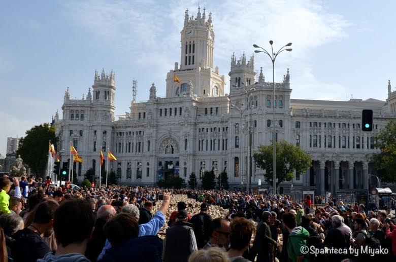 Fiesta de la Trashumancia Madrid  マドリード市庁舎前を通過する羊の群れ