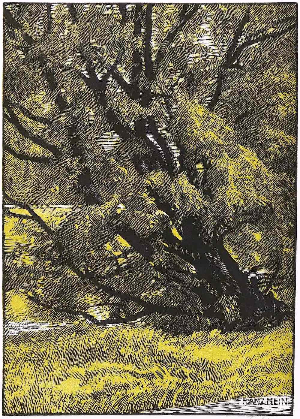 Franz Hein art, a tree