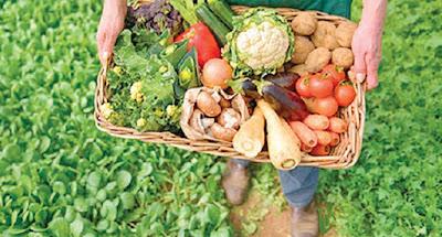 La comida orgánica