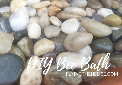 DIY Bee Bath