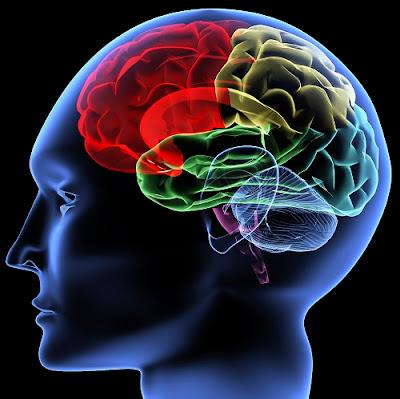 5 Kebiasaan Yang Dapat Merusak Otak Secara Perlahan