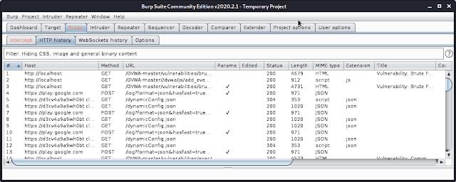 Burp suite proxy HTTP history