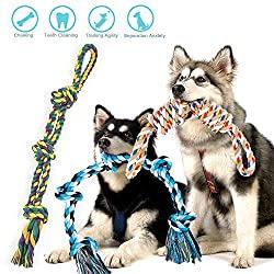 Robustes Spielzeug für Hunde
