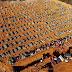 INFORME FUNERÁRIO - Dos 110 sepultamentos em Manaus 36 foram declaradas do novo coronavirus