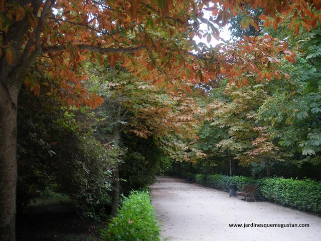 Otoño en Parque del Retiro de Madrid