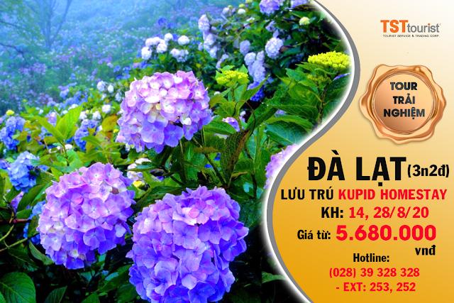 Lưu trú tại Kupid Homestay - Đà Lạt (3 ngày - 2 đêm)